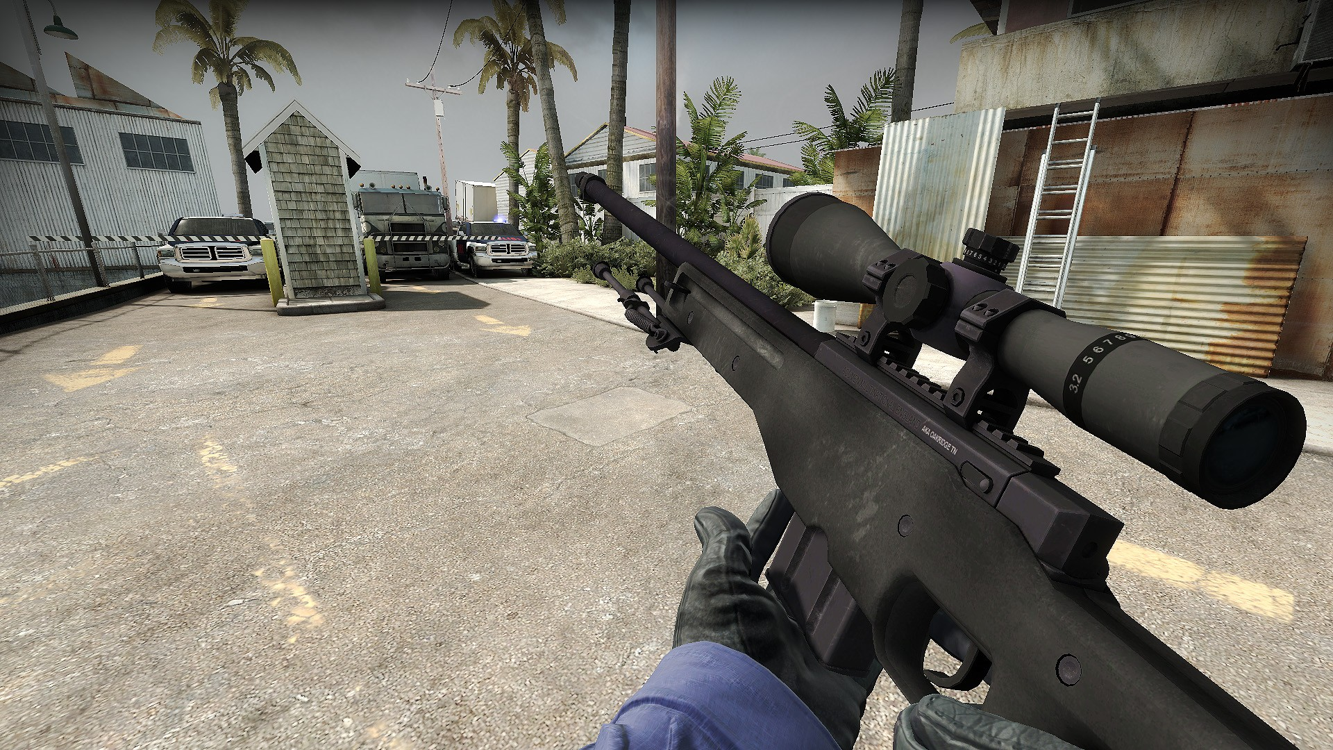 AWP Weapon Skins For CSGO Shoppers